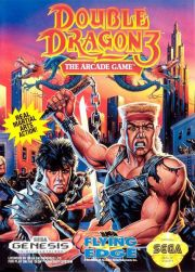 Double Dragon 3: The Arcade Game (MD, 1992)