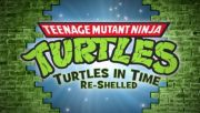 Teenage Mutant Ninja Turtles: Turtles in Time - Re-Shelled (PS3, 2009)